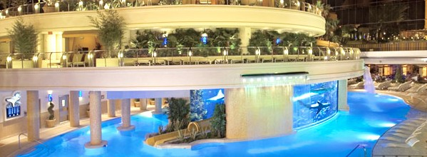Vegas Hotel With Waterslide Through Shark Tank