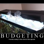 Budget Reefkeeping – Part II